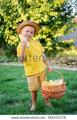 cCute boy with a basket of sweet corn