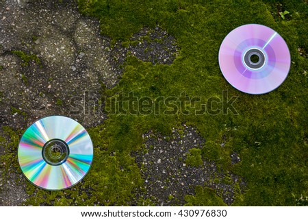 CDs with scratches on the asphalt and moss. 