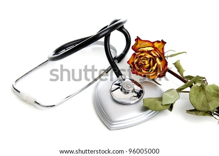 Ceased blossoming of a beatifull rose interpreting  a lost or broken love - stock photo