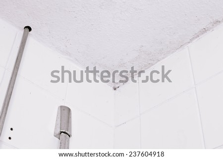 Ceiling mould due to condensation in a bathroom - stock photo