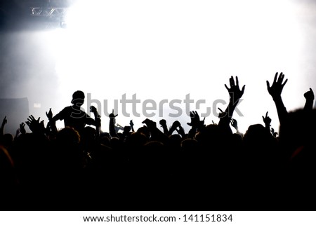 celebrating crowd having fun at a concert or electronic festival