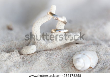 Celebration Valentine's day on beach, rings on shell - stock photo