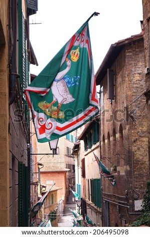 Celebrations for winning the Palio by the Contrada of the Goose in the ancient streets of Siena, Italy - stock photo