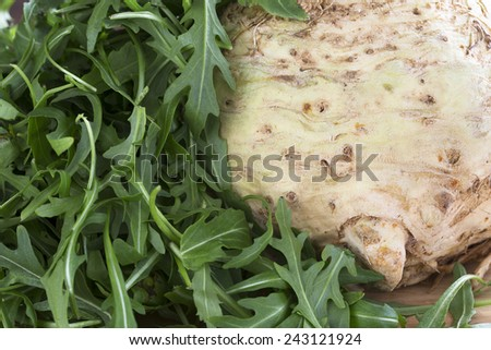 Celeriac and Arugula lettuce ingredients for a healthy salad - stock photo