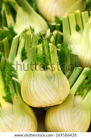 celery at vegetable market - stock photo