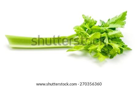 Celery isolated on white background - stock photo