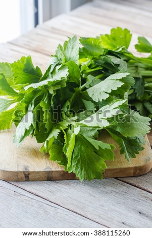 celery plant on chopping board - stock photo