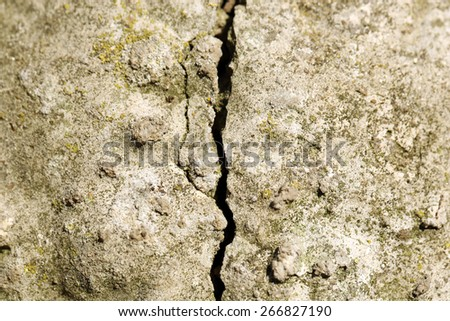 Cement textured wall background