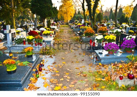 Cemetery alley background