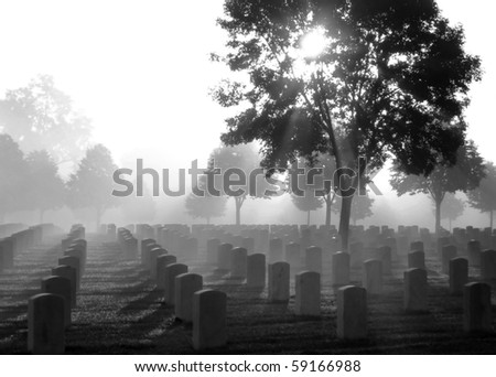 Cemetery on a foggy morning, black and white