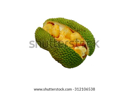 Cempedak fruit isolated on white background.  a fruit native to South East Asia region. - stock photo
