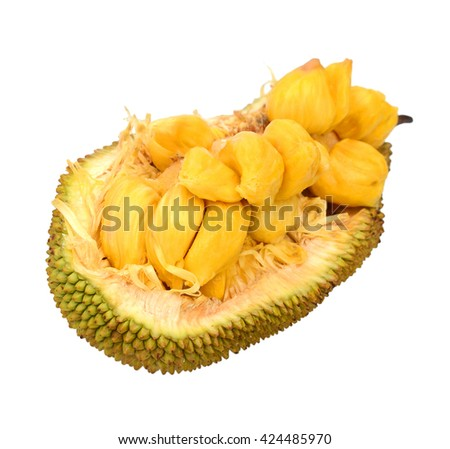 Cempedak or Artocarpus Integer, is a of family Moraceae, and same genus as breadfruit and jackfruit. It is native to southeast Asia - stock photo