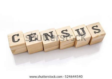 CENSUS word made with building blocks isolated on white