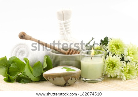 Centella asiatica, (Centella asiatica (Linn.) Urban.) Rich in vitamin B, vitamin C, beta carotene and Asiatic diets containing potash, which improves skin elasticity and helps heal wounds.   - stock photo