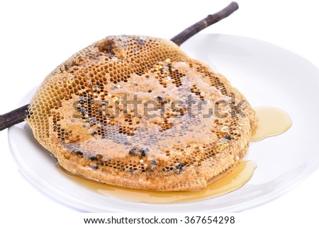 center focus Honeycomb close up isolated on the white background - stock photo