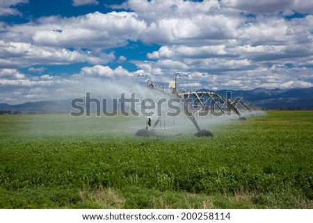 Center pivot agricultural irrigation system in an alfalfa field - stock photo