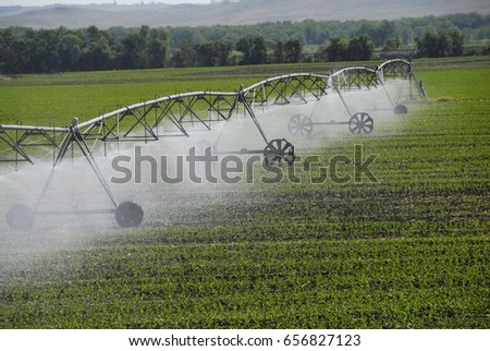 Center pivot irrigation of crops.