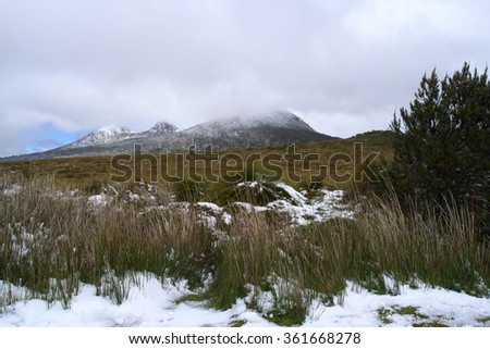 CENTRAL HIGHLANDS TASMANIA, AUSTRALIA - NOVEMBER 26 : Climate change weather event of unseasonal snow in summer