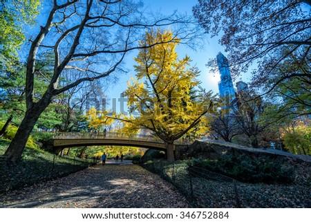 central park - stock photo