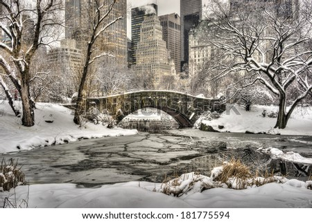 Central Park after snow storm in New York City