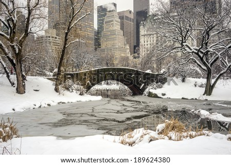 Central Park after snow storn in New York City