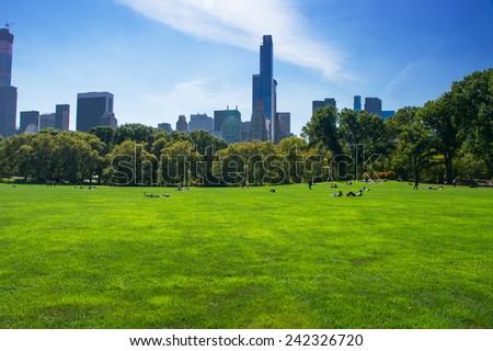 Central park at sunny day, New York City, USA. - stock photo