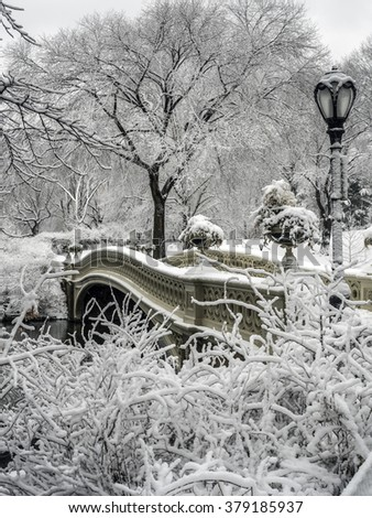 Central Park Bow Bridge during a snow storm New York City