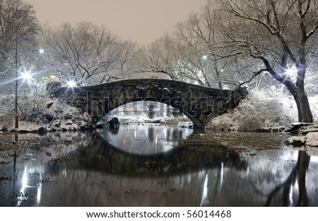 """Central Park by """"the pond"""" showing the crossover bridge.   Image was taken in New York City on the south end of the park on December 21, 2008 in the USA. - stock photo"""