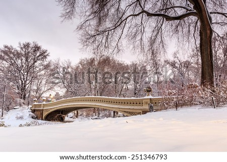 Central Park - New York City bow bridge after snow storm Linus at twilight