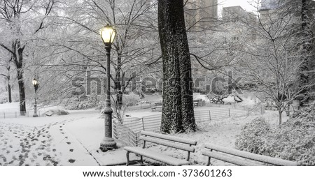 Central Park, New York City, Febuary 5th 2016, snow storm