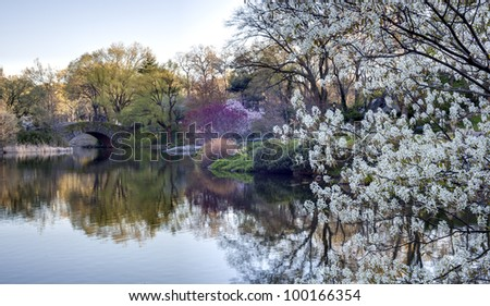Central Park, New York City Gapstow bridge, early morning in spring - stock photo