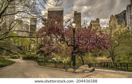 Central Park, New York City near the pool - stock photo