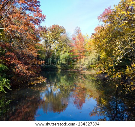 Central Park New York City - Scenic landscape of a pond in Fall - stock photo