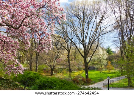 Central Park spring landscape scene in New York City - stock photo