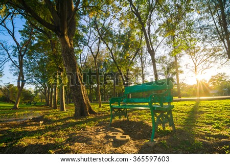 Central park with green park bench light shadow in evening, summer