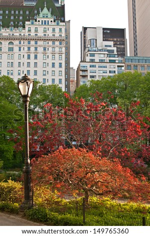 Central park with street lamp and bright red green trees - stock photo