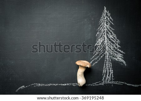 Cep Mushroom food background - stock photo