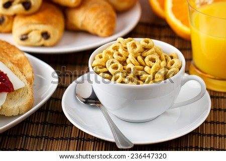 Cereal with milk - stock photo