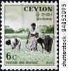 CEYLON - CIRCA 1950: A stamp printed in Ceylon, Sri Lanka,  shows Three women in the rice field, circa 1950 - stock photo
