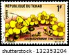 "CHAD - CIRCA 1969: A stamp printed in Chad shows Flower Cochlospermum tinctorium, with the same inscription, from the series ""Flowers"", circa 1969 - stock photo"