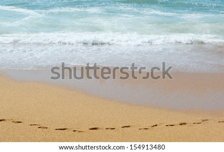 Chain of traces on sand along the ocean - stock photo