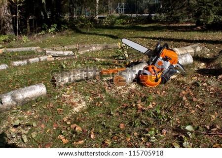 chainsaw, lumberjack felling - stock photo
