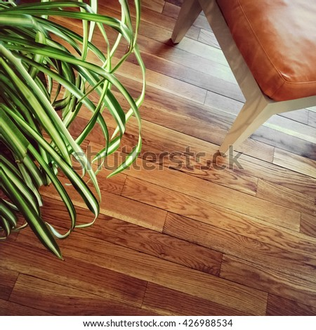 Chair and green plant on wooden floor.