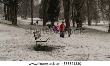 Chair in the winter with snow backgrounds