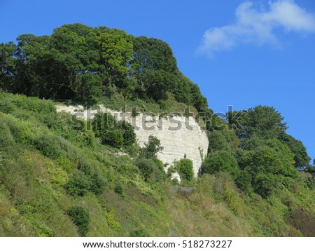 Chalk cliff face above Beer Beach in Devon, UK