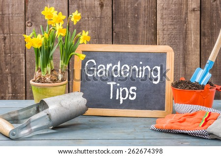 Chalkboard on a plant table with the text Gardening Tips - stock photo