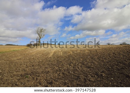 Chalky plowed soil in the yorkshire wolds farming landscape in winter with bare trees and hedgerows under a blue cloudy sky