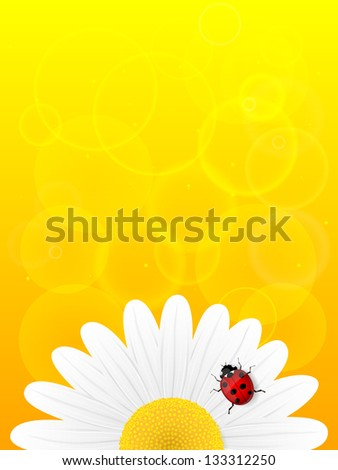 Chamomile flower and ladybird on yellow background. Illustration. - stock photo