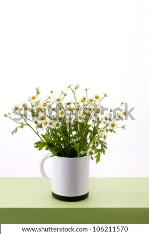 chamomile flower in cup on table - stock photo