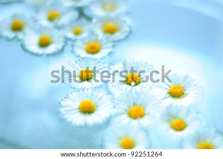 Chamomile flowers in aromatherapy bowl